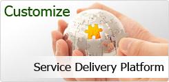 Service Delivery Platform (SDP) Market