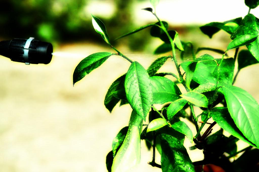 Agrochemicals Market