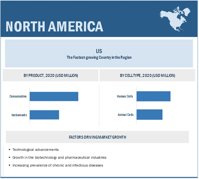 Cell Expansion Industry Market